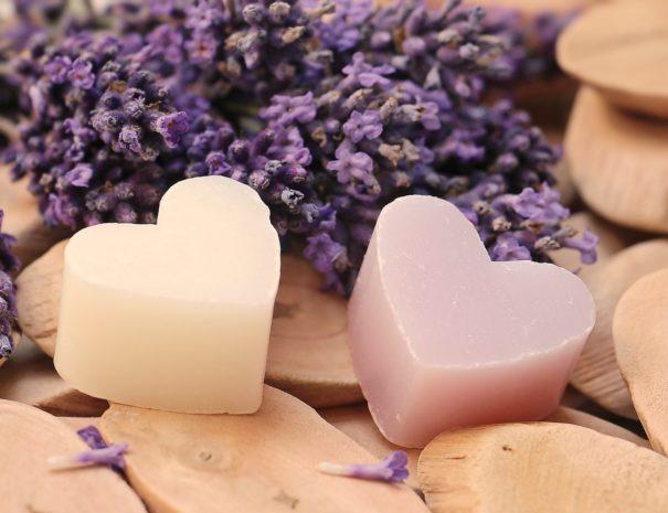lavender-2443210_1920